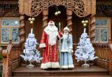 Дед Мороз из Беловежской пущи объявил конкурс для детей