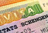 «Делаем визу и едем отдыхать»: как и где жителю Бреста открыть визу?