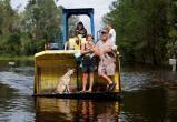 Фотофакт. Как во время урагана в США спасают домашних животных