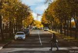 Золотая осень: в выходные будет тепло и солнечно