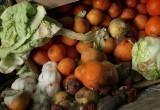 Что делать, если купленная в магазине еда испорчена?