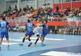 SEHA-Лига. БГК резервным составом проиграл в гостях «Войводине»