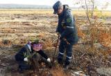 Брестские таможенники приняли участие в акции «Чистый лес-2018»
