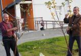 Завершилось строительство двух детских домов семейного типа по улице Высоковской