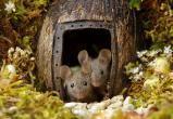 Мужчина построил в своем саду городок для мышей