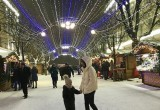 В Брест пришла зима: самые снежные фото из инстаграм