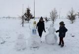 Жительницу Брестского района оштрафовали за «политизацию снеговика»