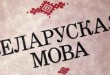 48% населения Беларуси считают белорусский язык родным