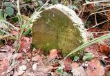Британец нашёл 130-летнюю могилу кролика