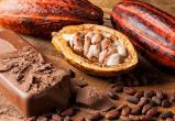 Шоколад может исчезнуть через 30 лет