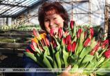 Брестский «Коммунальник» рассказал, сколько цветов планирует продать к 8 Марта