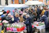 На Пушкинской в канун 8 Марта будут торговать 100 продавцов цветов
