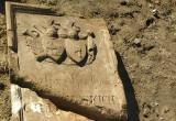 Надгробную плиту и человеческие останки 19 века нашли в Каменецком районе