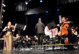 Искусство из 6 стран: фестиваль «Пестрый тюльпан» пройдет в Бресте