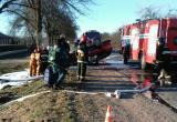Легковушка врезалась в дерево и перевернулась в Пинске (видео)