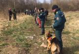 50 человек ищут маленького мальчика из Каменецкого района