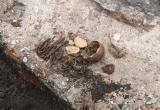 Костные останки нашли в Брестской крепости (фото)