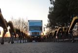 Инженеры заставили роботов тянуть грузовик (видео)