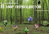 Бесплатную ботаническую экскурсию проведут для брестчан