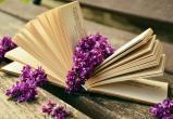Тест от Mediabrest: книги и писатели