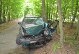 Машина врезалась в деревья под Брестом: водитель в больнице