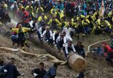 Спуститься с горы на бревне: опасный фестиваль в Японии (видео)