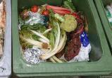Отмена штрафа за изъятие товаров из мусорных контейнеров ожидается в Гамбурге