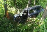 Автомобиль врезался в дерево в Дрогичинском районе