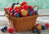 Ночные поиски в Ивацевичах: пенсионерка ушла за ягодами и пропала