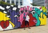 Власти наняли художника по граффити и задержали его из-за рисунков