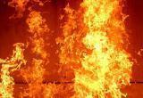 Два человека пострадали на пожаре в Кобрине (видео)