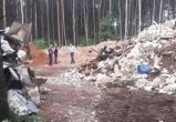 Предприятие устроило свалку в лесу в Барановичском районе