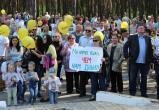 Противники завода АКБ хотят участвовать в парламентских выборах