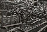 Бресту – 1000 лет. Как археологи и школьники откапывали «Белорусские Помпеи»