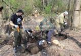 Военный самолет и останки летчика подняли из болота в Ивацевичском районе