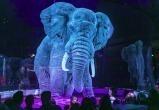 Немецкий цирк заменил животных голограммой