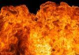В Березовском районе загорелась конюшня