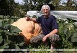 В Беларуси вырастили тыкву весом в полтонны