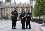 Огромную партию героина в 1,3 тонны изъяли в Великобритании