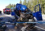 Маршрутка влетела в фуру: двое погибли, четверо пострадали (видео)
