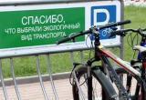 В Бресте водители смогут бесплатно кататься на общественном транспорте 22 сентября