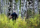 В Брестской области разрешили посещать леса
