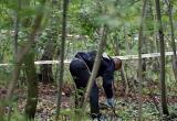Немецкую чиновницу изнасиловали в московском парке