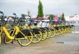 В Брест пришел велошеринг «Колобайк». Рассказываем, где и как взять покататься желтые велосипеды