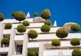 Самые «зеленые» здания: трава и деревья прямо на крышах