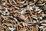 Окурки наносят огромный вред экологии (видео)
