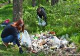 В Беларуси проведут акцию «Чистый лес»