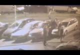 Видео: поймали минчан, которые бегали по крышам авто