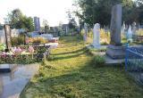 В Малоритском районе с кладбищ воруют ограды
