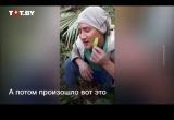 Видео: парень фотографировался с кузнечиком, но что-то пошло не так
